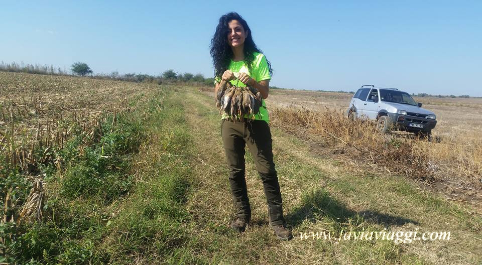 Hunting for Quails in Europe