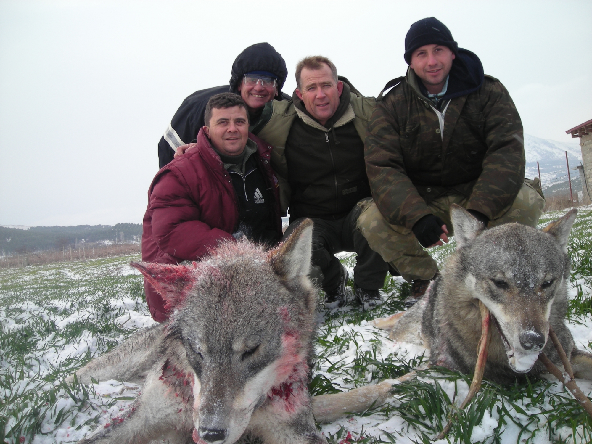 Wolf Hunting Group Trip