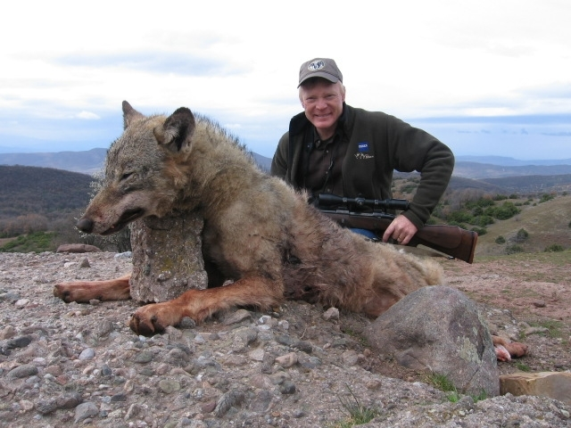 Wolf Hunting in Macedonia