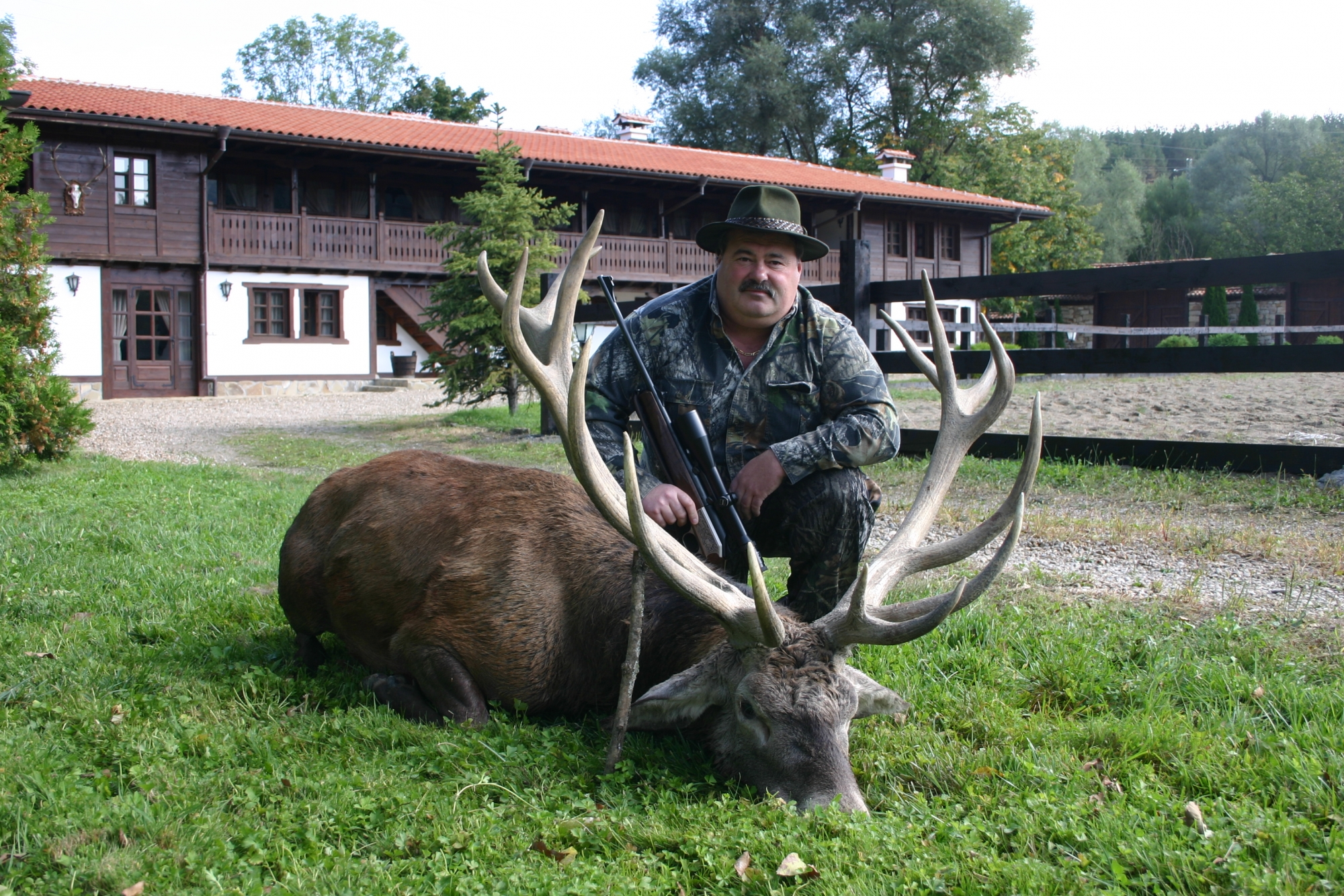 Red Stag Trophy
