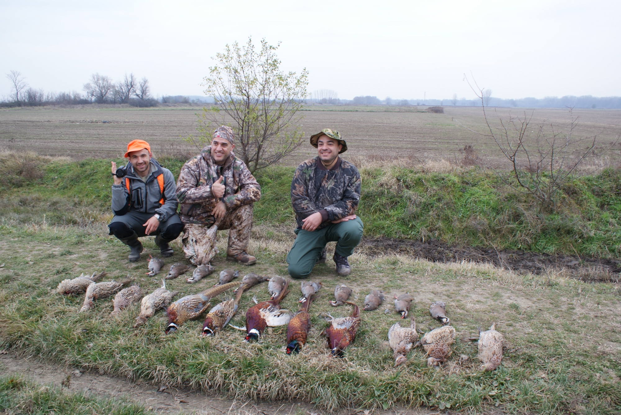 Pheasant Hunt in Europe