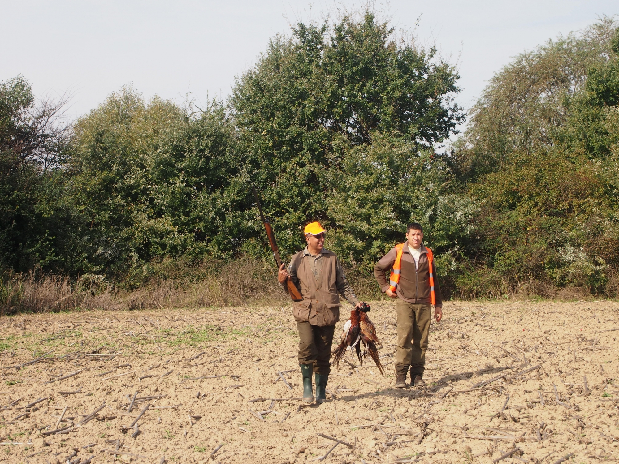 Pheasant Hunting Area