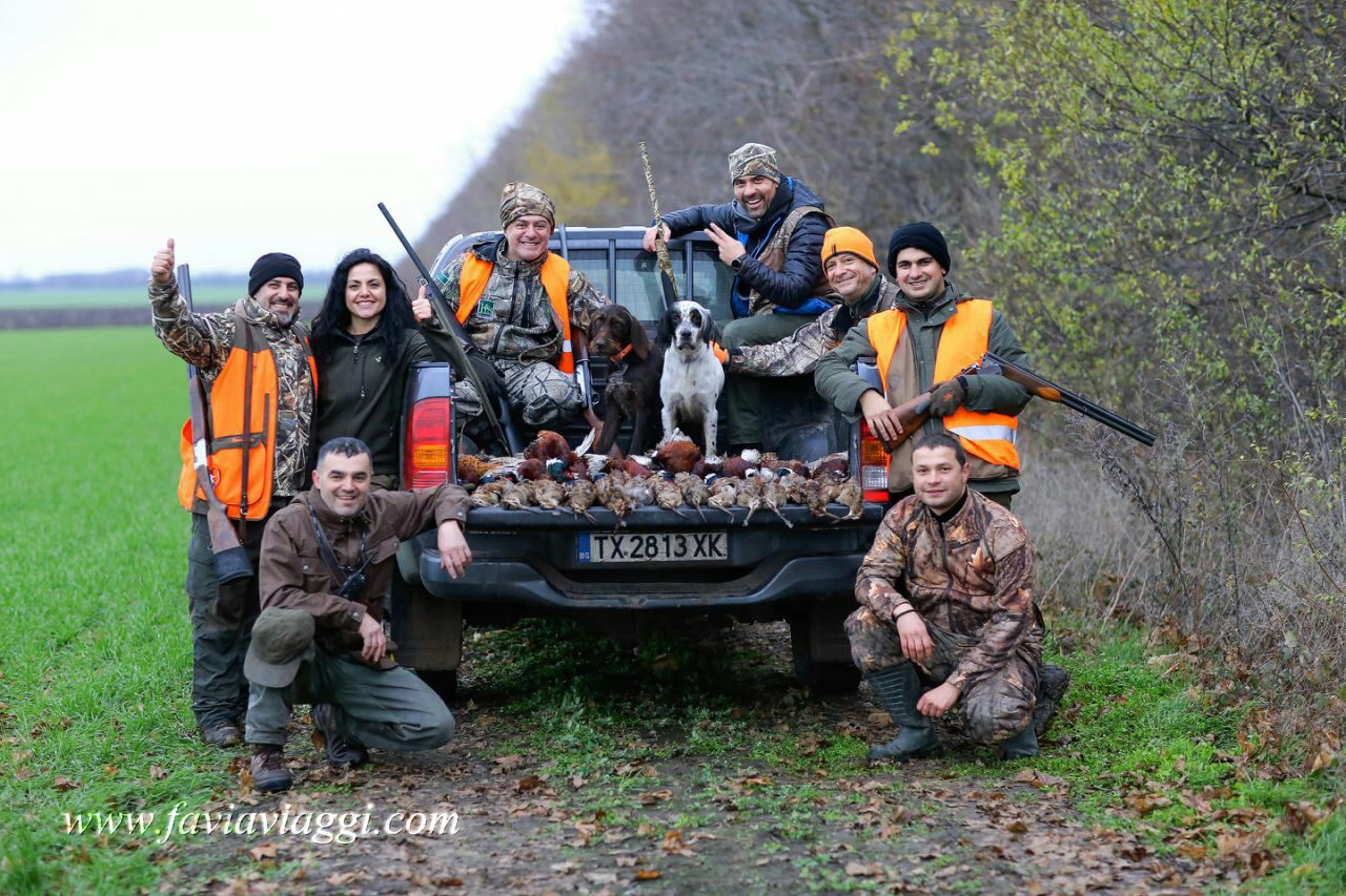 Woodcock Group Hunting in Europe