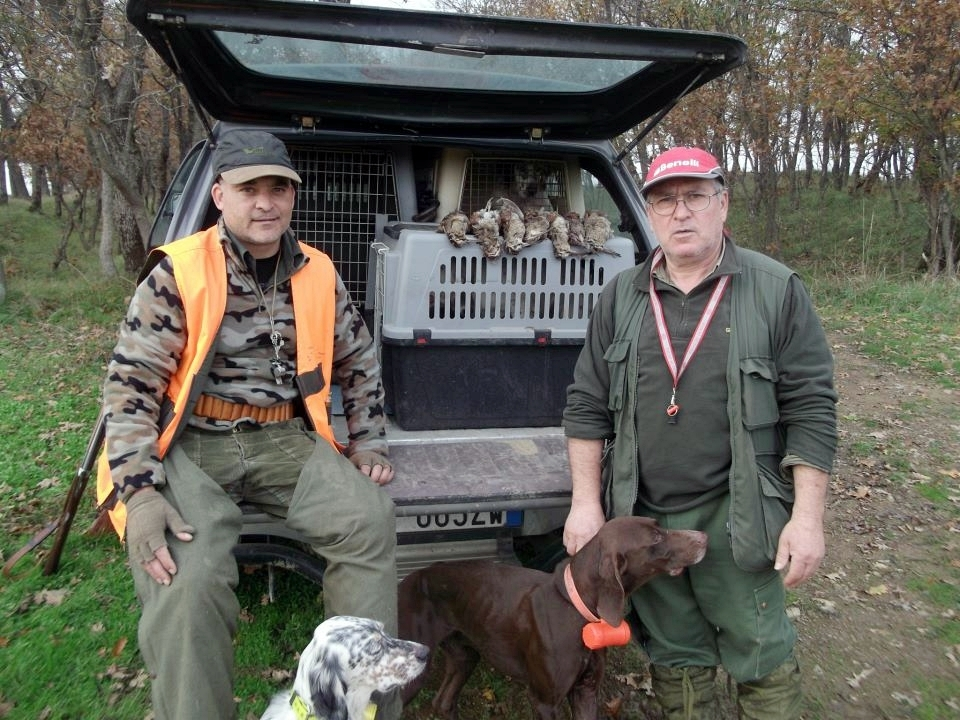 Woodcock Hunting Trips in Europe