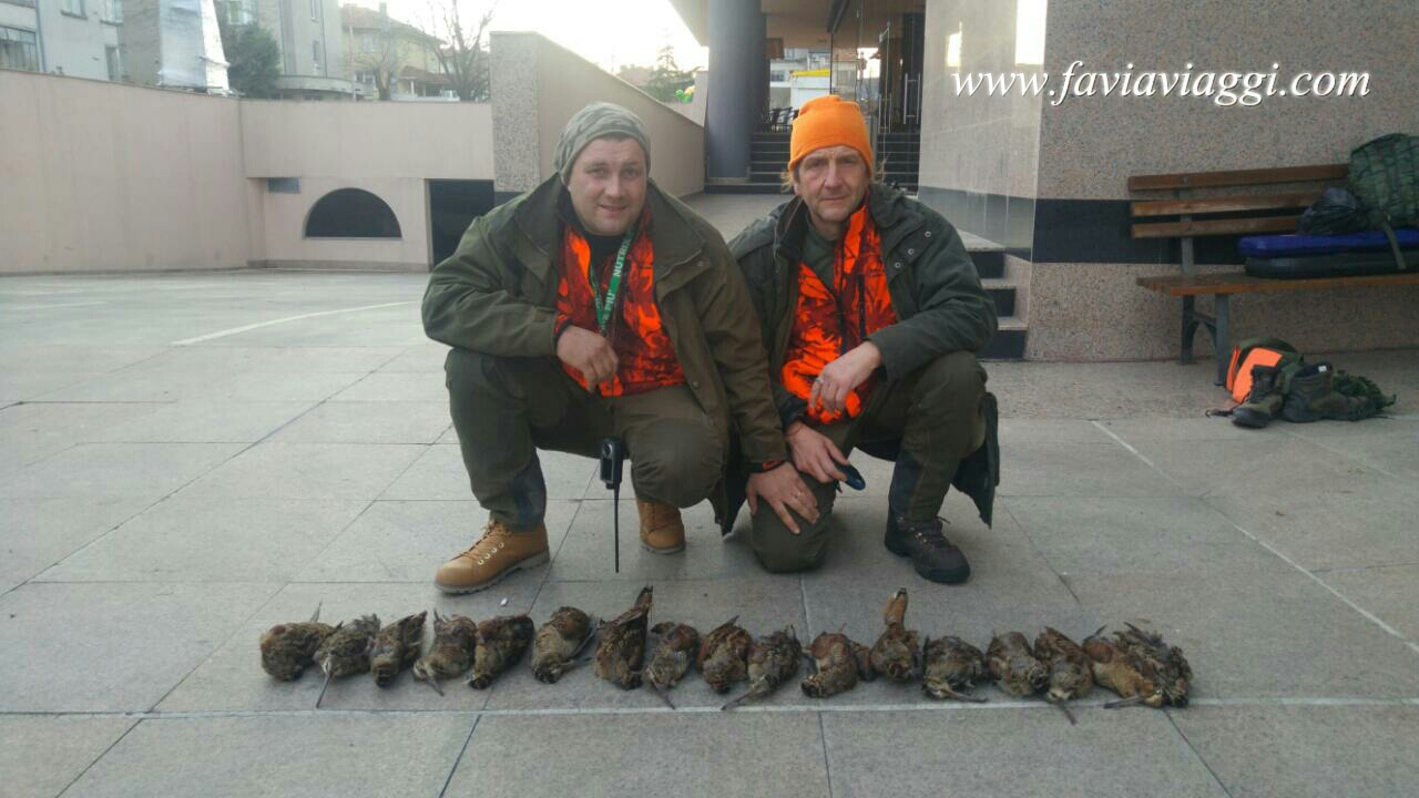 Hunt Woodcocks in Europe