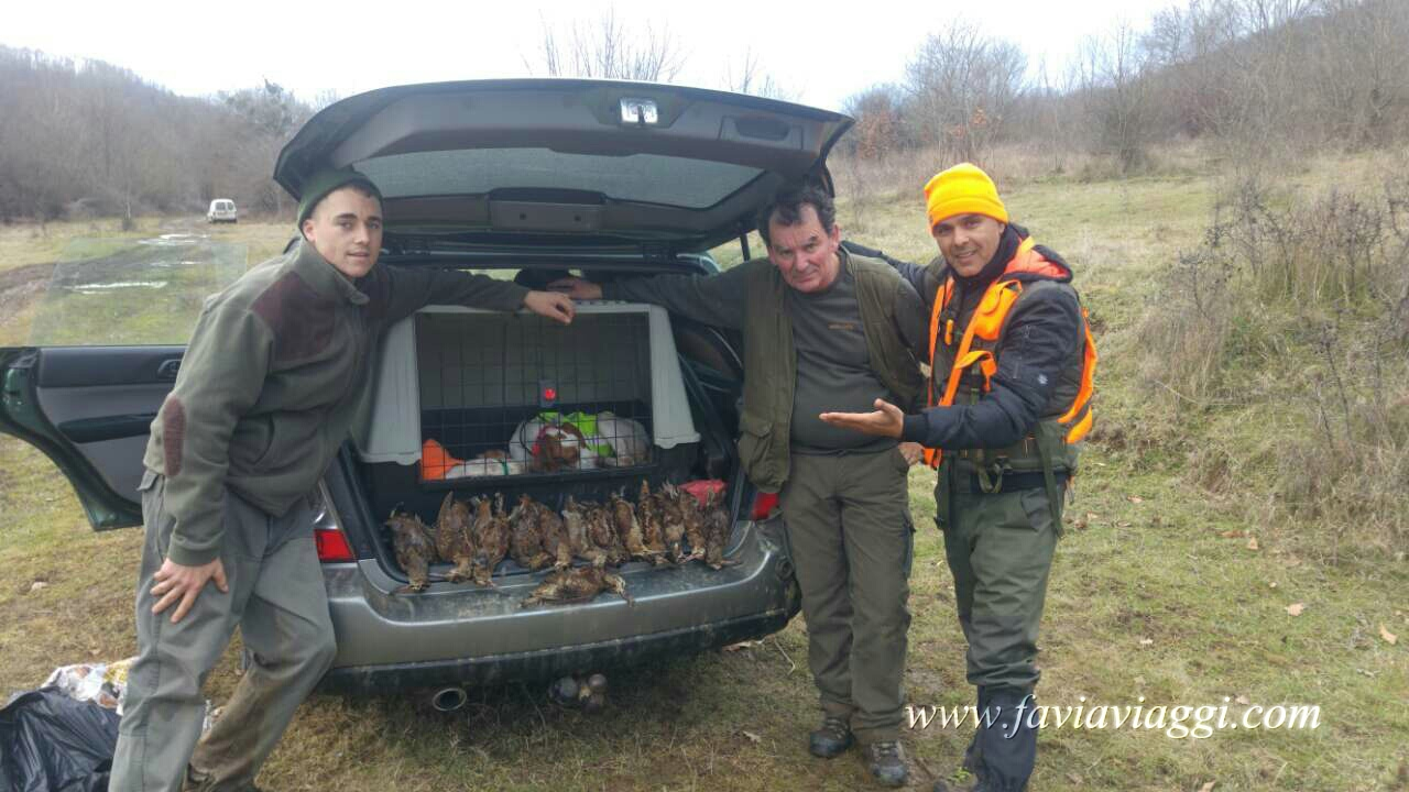 Woodcock Hunting Trip in Europe