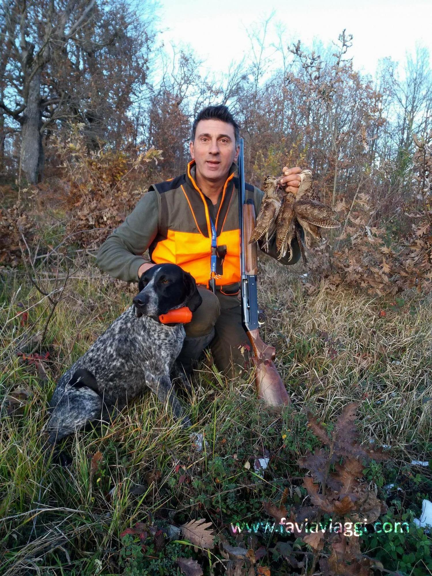 Woodcock hunting