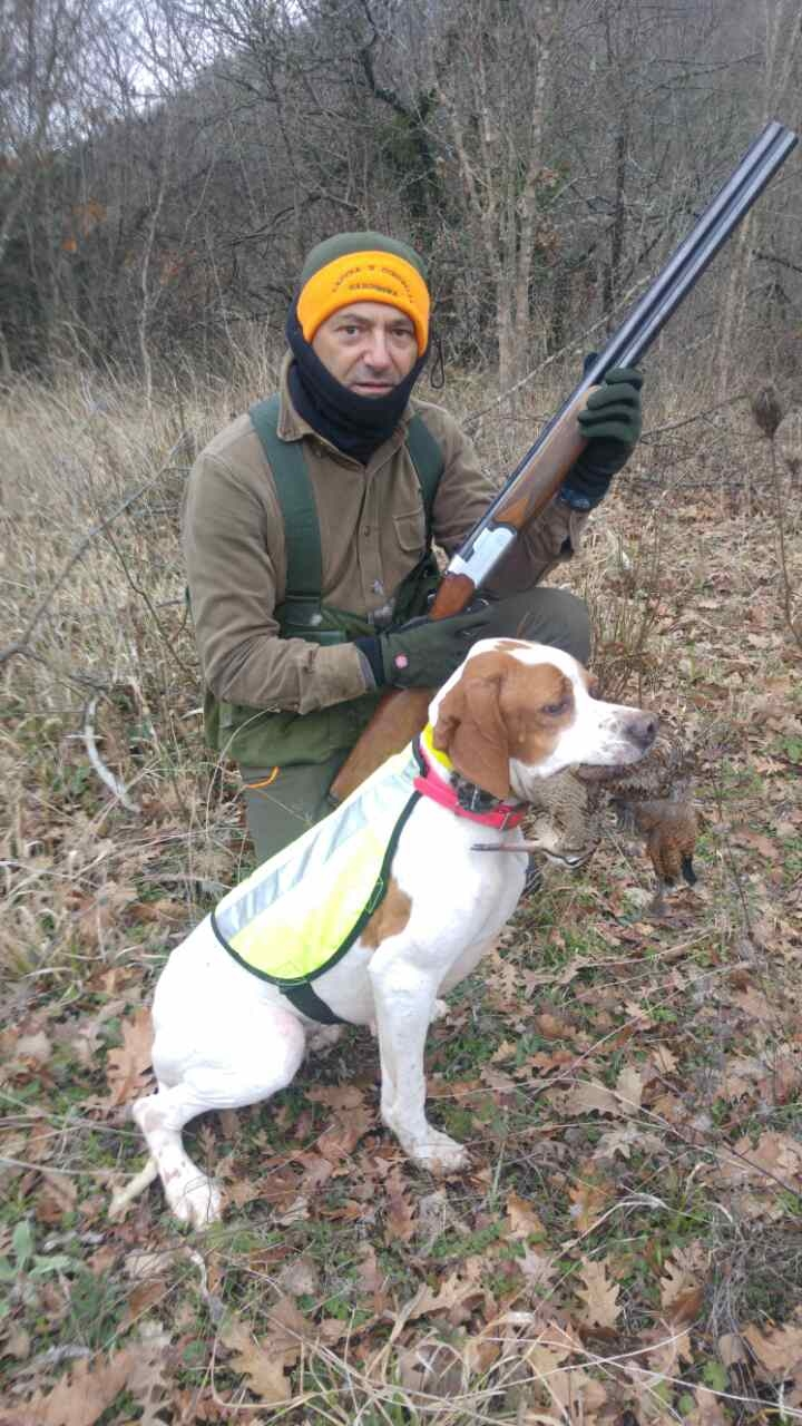 Pointing Dog Small Game Hunting Trips
