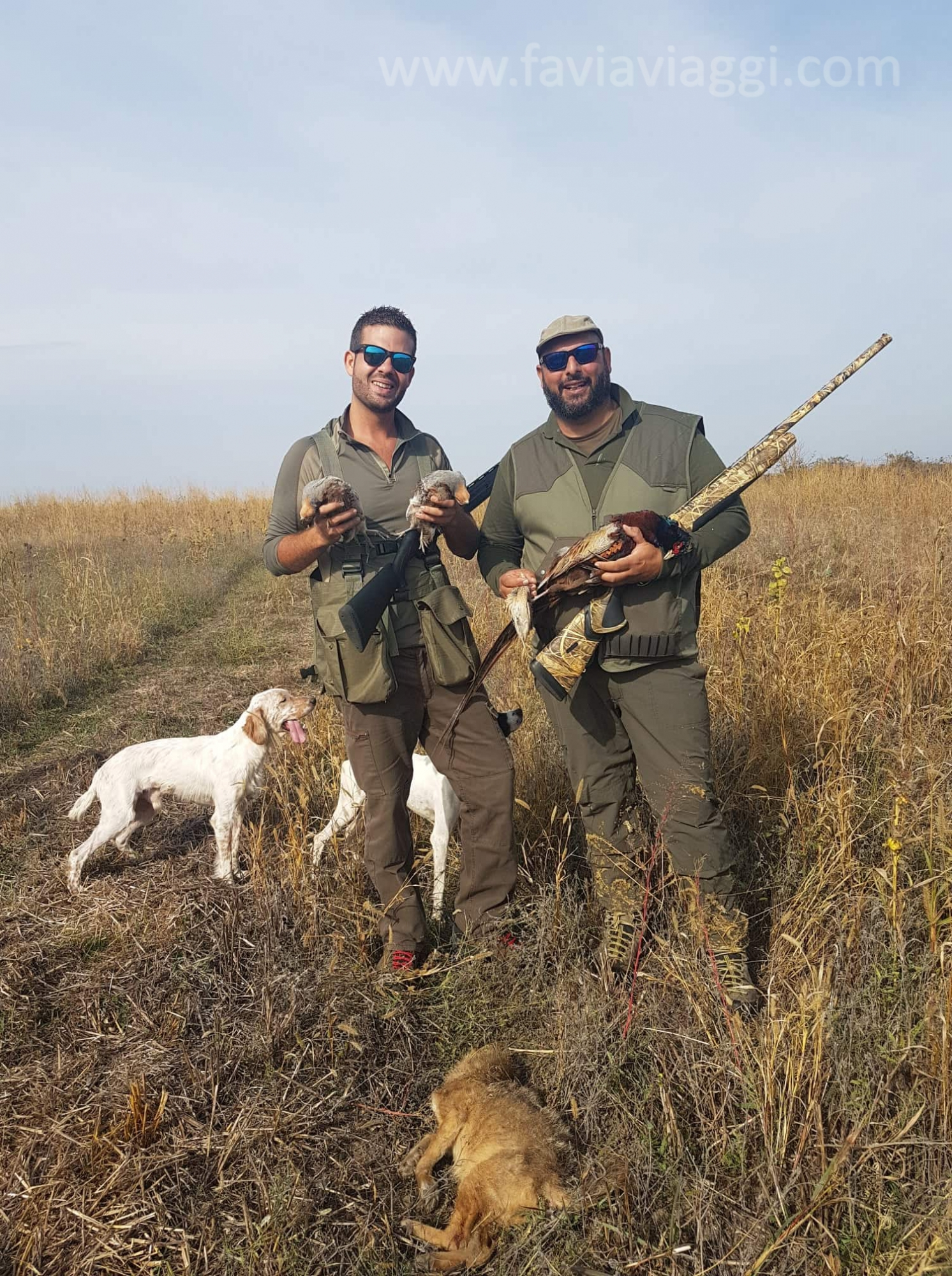Walk Up Hunting Partridges