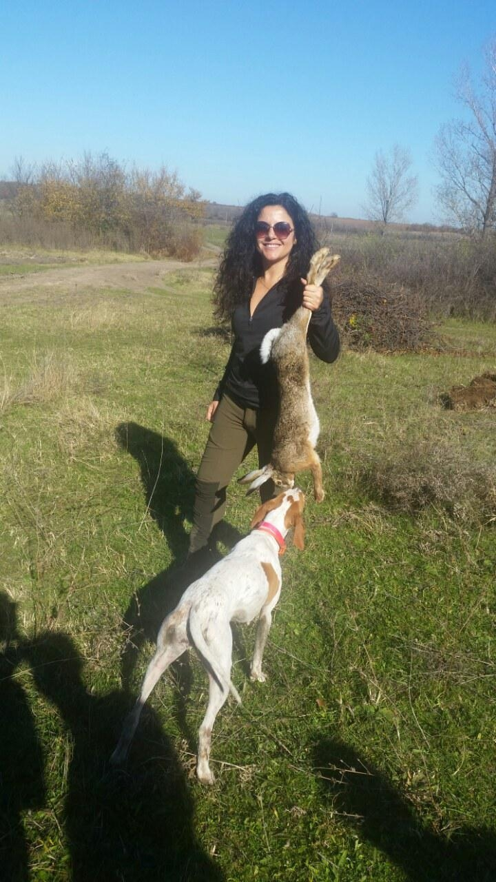 Hare Hunting Dogs