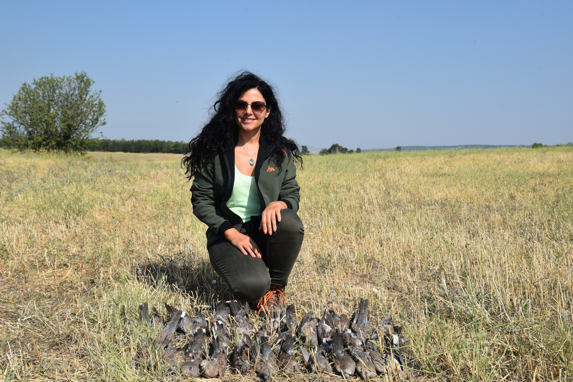 Turtle-Dove Hunting in Macedonia