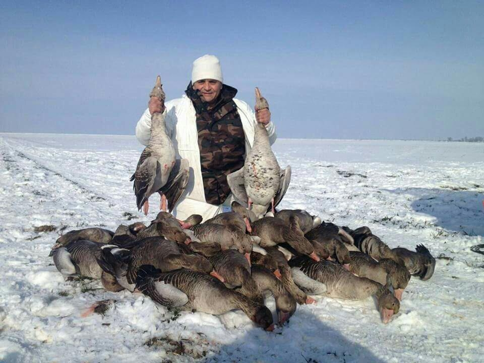 Hunting Small Game Geese