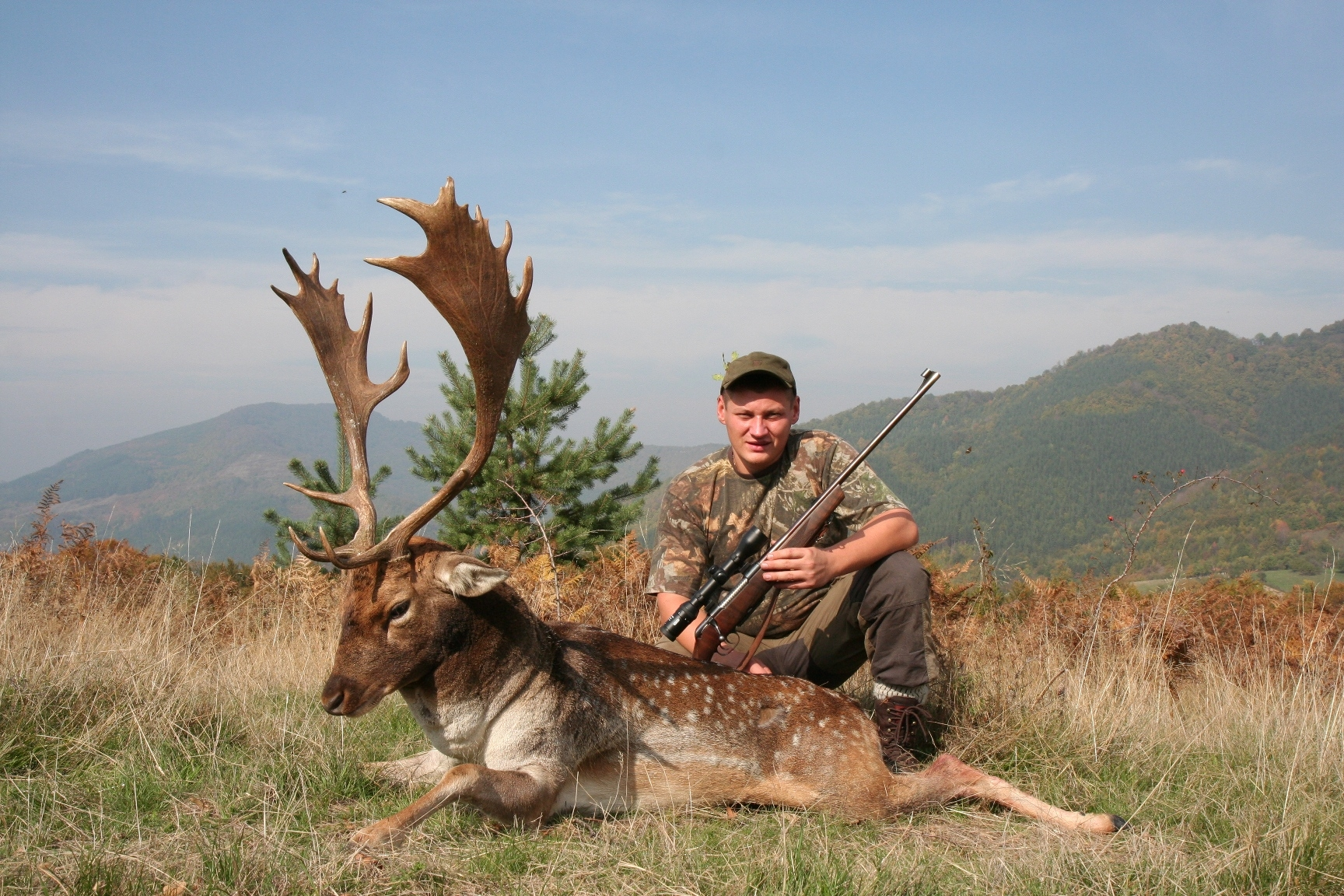 Stalking Fallow Deer in Europe