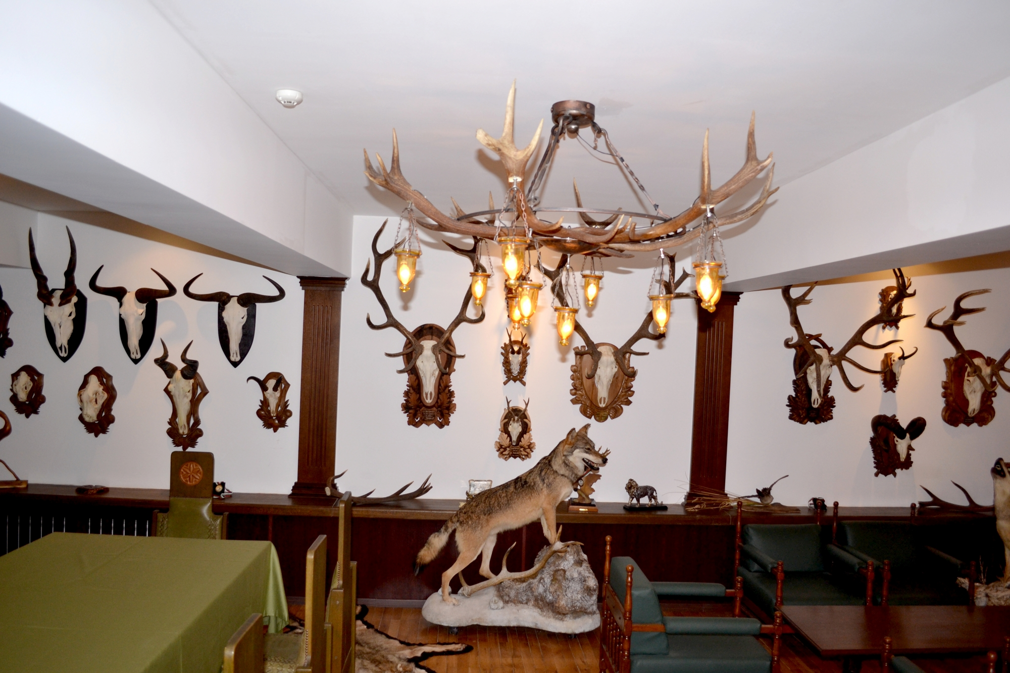 Hunting Hotels in Europe