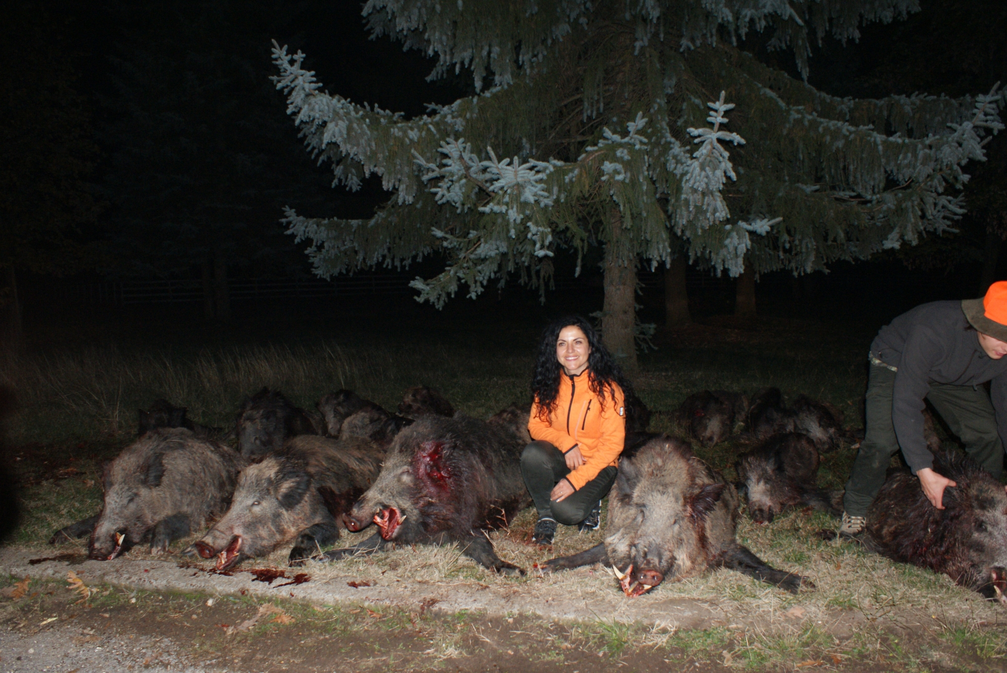 Hunting For Wild Boar in Europe
