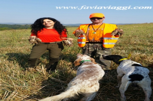 Small Game Hunt With Pointing Dog