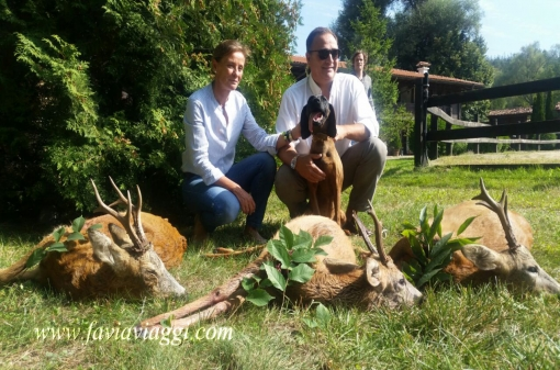 Roebuck Hunting in Europe