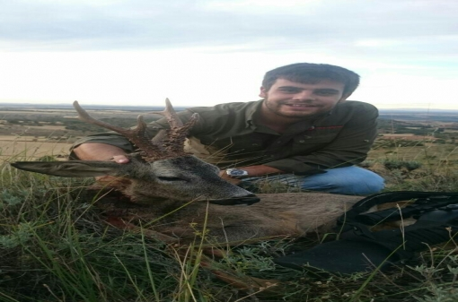 Big Game Roe Deer Hunt