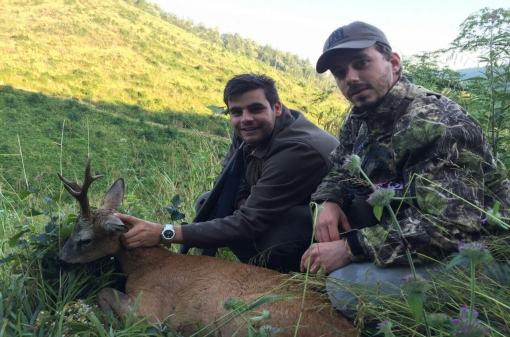 Roe Deer Hunting Reserve in Bulgaria