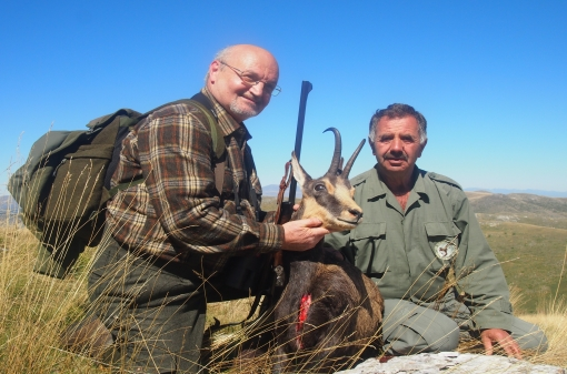 Group Hunting Chamois in Bulgaria