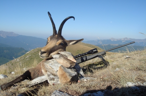 Chamois Trophy Hunt
