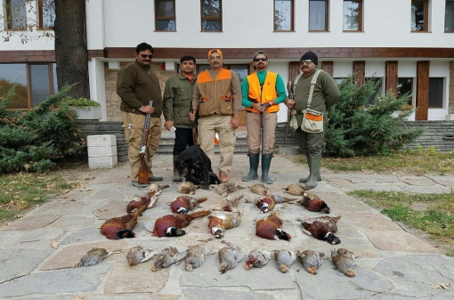 Small Game Pheasant Hunting