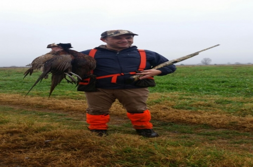 Pheasant Hunting Grounds in Bulgaria