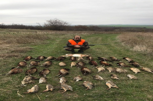 Pheasant Hunting in Bulgaria