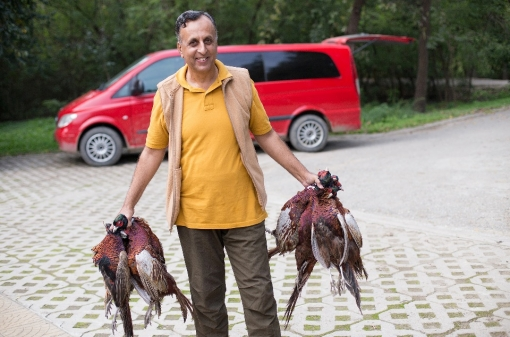 Hunting Pheasants in Europe
