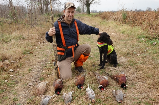 Pheasant Hunt with Pointing Dog