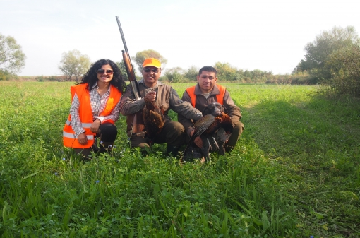 Pheasant Hunting Trips in Europe