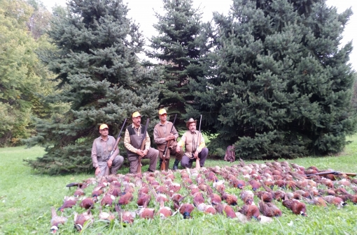 Pheasant Hunting Destinations