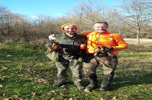 Small Game Hunting Destinations in Bulgaria