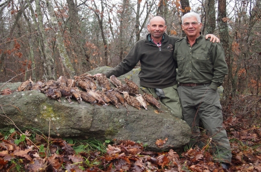 Woodcock Hunting Grounds in Bulgaria