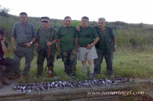 Hunting Turtle-Doves in Bulgaria