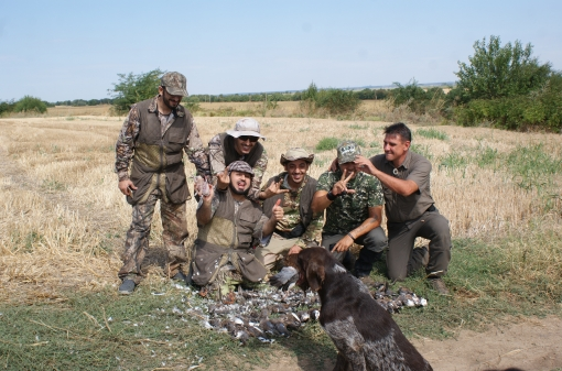 Turtle-Dove Hunting With Dog