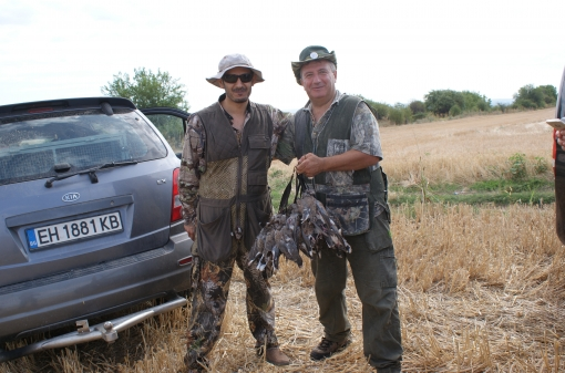Turtle-Dove Hunting Trip