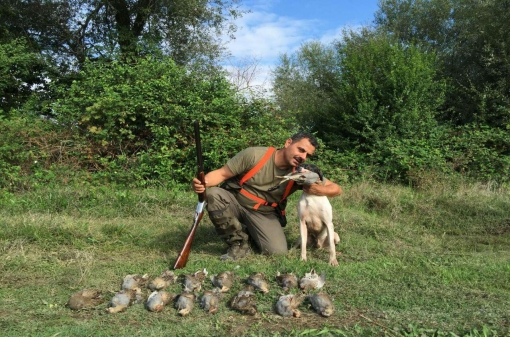 Walk Up Partridge Hunting in Europe