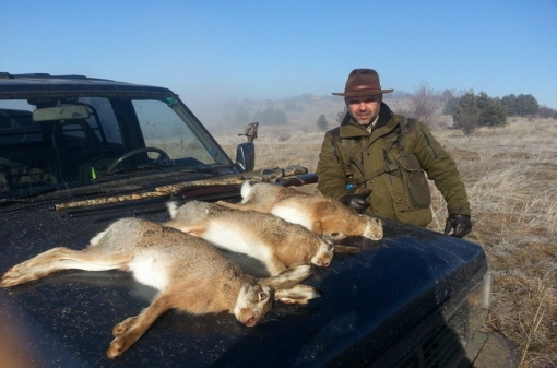 Rabbit Hunting Trips in Europe