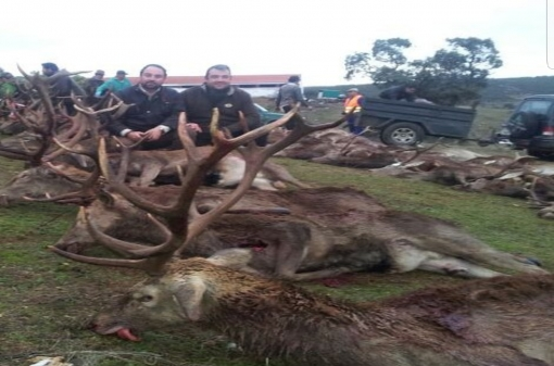 Monteria Hunting Trips in Spain
