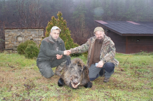 Wild Boar Trophy in Bulgaria