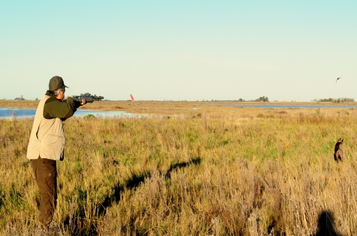 Turtle-Dove Hunting In Argentina