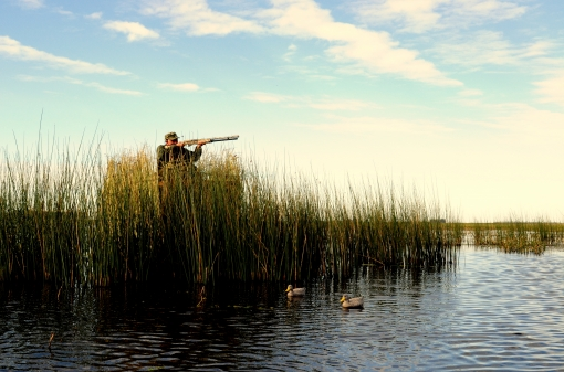 Waterfowl Hunting Destinations