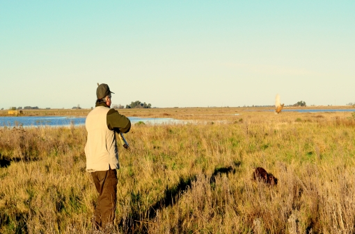 Wild Duck Hunting Trip in Argentina